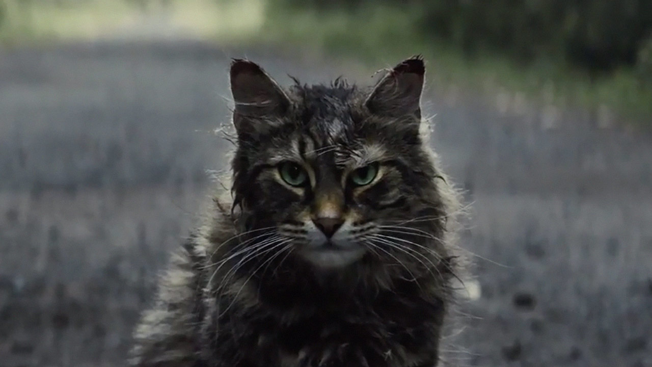 watch Pet Sematary Trailer