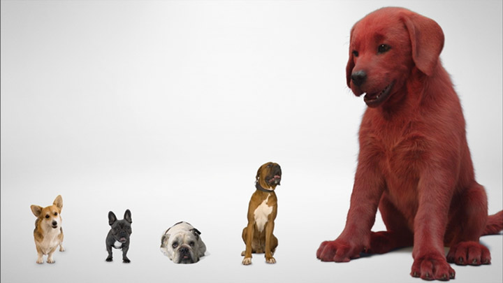 watch Clifford The Big Red Dog First Look
